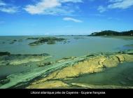 16_Littoral_atlantique_guyanais_copier